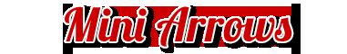 Mini ARROWS Schriftzug
